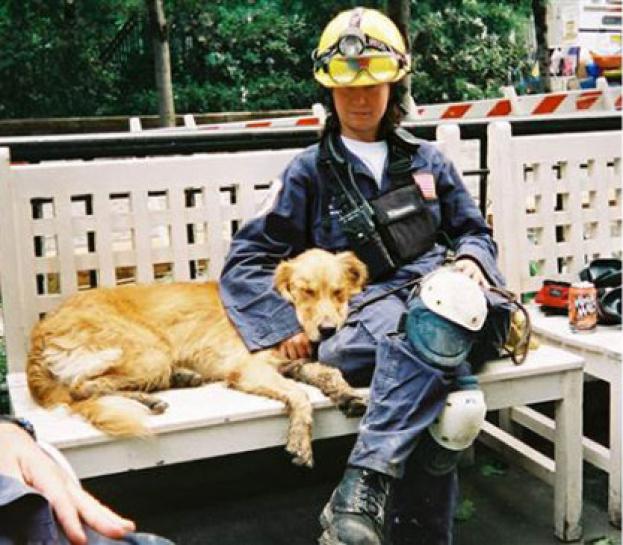 Ostatni żyjący pies-bohater, który ratował ludzi spod gruzów WTC, skończył 16 lat!