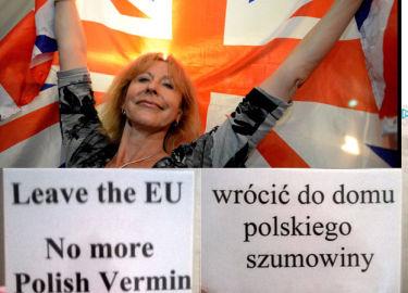 """Zwolennicy Brexit do polskich emigrantów: """"Wrócić do domu polskie szumowiny"""""""