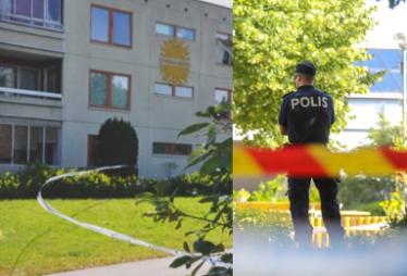"""Tragiczna śmierć Polki i jej dzieci w Szwecji to MORDERSTWO CZY """"ROZSZERZONE SAMOBÓJSTWO""""?"""